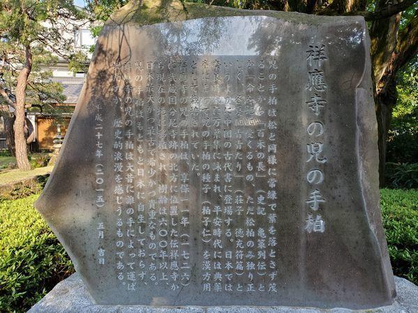 03-01_sho-o-ji_05.jpg
