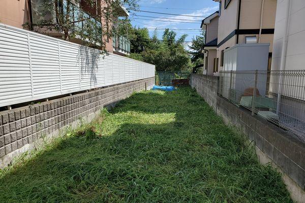 20190925_yamamomo_08.jpg