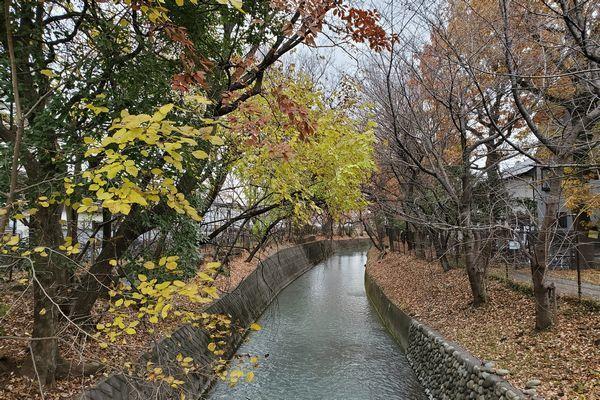20191219_josui-walk_01.jpg