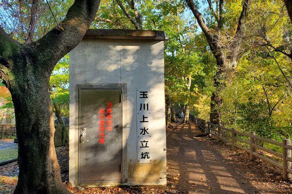 20191219_josui-walk_23.jpg