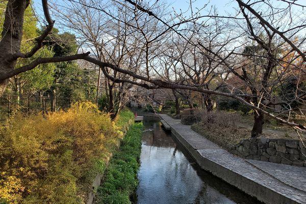 20191220_nikaryo_04.jpg