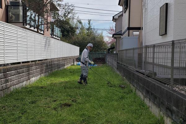 20200316_yamamomo_01.jpg